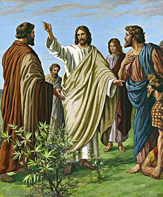 Renungan Sabda: Mat. 28:19-20 | Kamis, 21 Mei 2020 | Hari Raya Kenaikan Tuhan